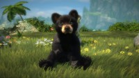 Kinectimals with Bears!